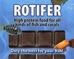 Rotifer 100 Gr Blister - 24 Cube New Line M 20