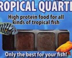 Tropical Quartet 100 Gr Blister - 20 Cube New Line M20