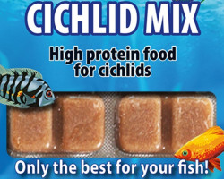 Cichlid Mix 100 Gr Blister - 20 Cube New Line M20