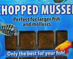 Chopped Mussel 100 Gr Blister - 20 Cube New Line M20