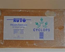 Cyclops 1000 Gr Flatpack M8