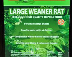 Large Weanerrat 60-90 Gr. X 4